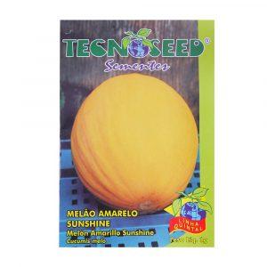 Semente Tecnoseed Melão Amarelo Sunshine 1g