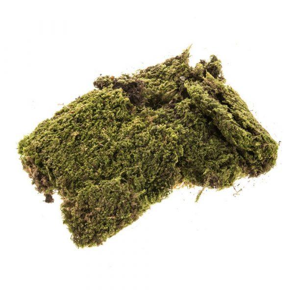Musgo Natural Verde 40201