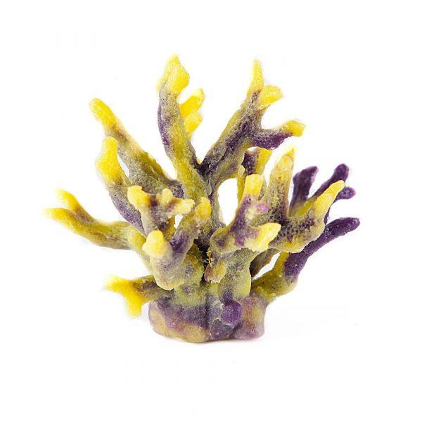 Enfeite Coral SH197