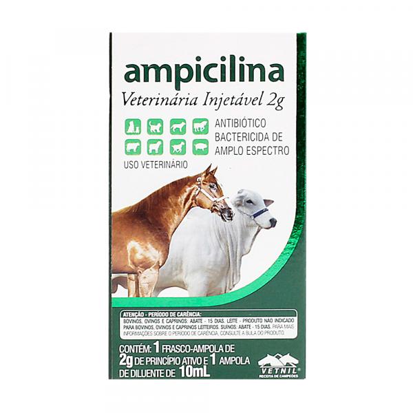 Ampicilina Injetável 10ml 2g