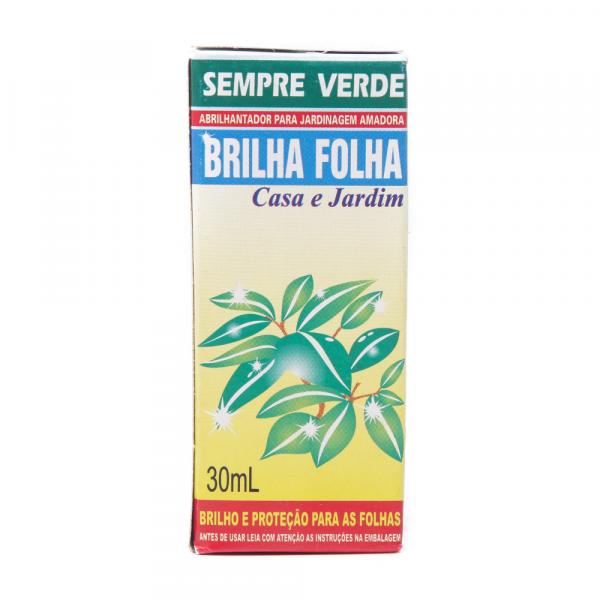 Inseticida Sempre Verde Brilha Folha 30ml Bonigo