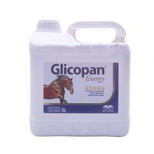 Glicopan Energy 5L