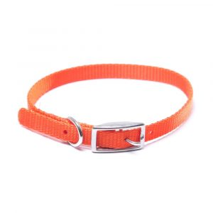 Coleira Coastal Pet Nylon Laranja 3/8 Sso12